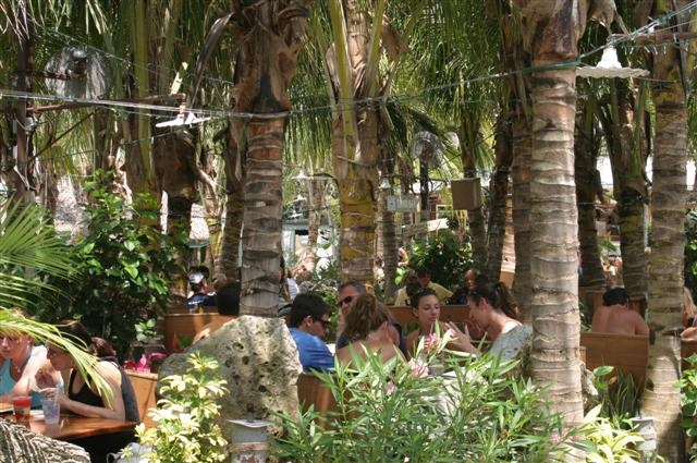 diners enjoy meals under palm trees on the beach