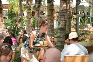a women serves drinks under palm trees