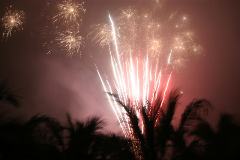 a fireworks display goes off above palm trees