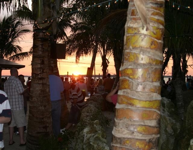 people enjoy food and watch a sunset through palm trees