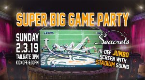 Super Big Game Party